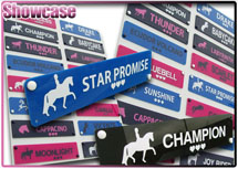 "Normal Large 13"" x 3"" Perspex Pony NamePlate"
