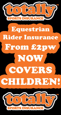Rider Insurance - Can You Afford Not To Have It?